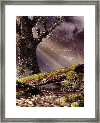 Fallen Tree Bridge Framed Print by Daniel Eskridge