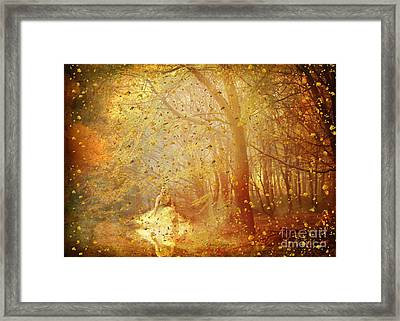 Falling ... Framed Print by Chris Armytage