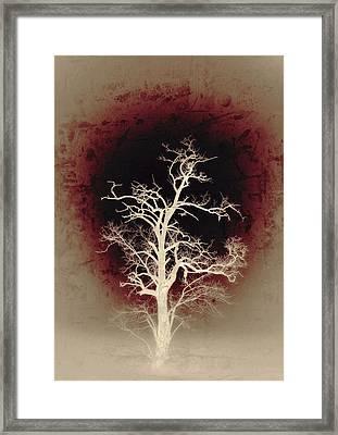 Falling Deeper... Framed Print