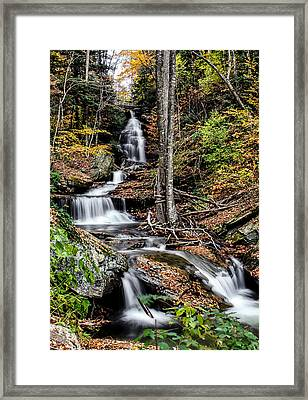 Framed Print featuring the photograph Falling Down by David Stine