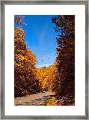 Falling Fall Leaves - Blue Ridge Parkway Framed Print by Dan Carmichael