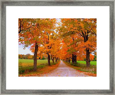 Falling For Romance Framed Print