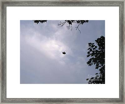 Falling Leaf Aka Lucky Shot Framed Print