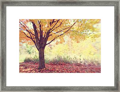 Falling Leaves Framed Print by Heather Green