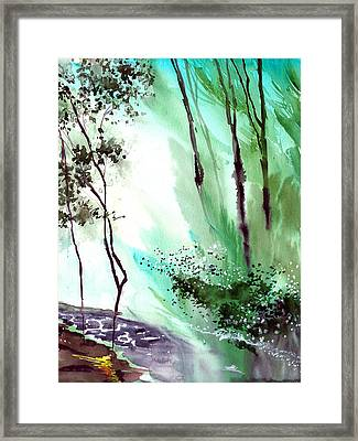 Falling Light Framed Print by Anil Nene
