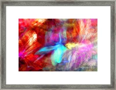 Falling Petal Abstract Red Magenta And Blue B Framed Print