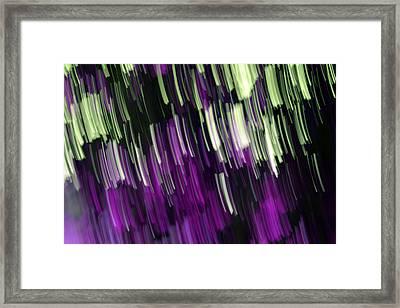 Falling Purple Framed Print by Eiwy Ahlund