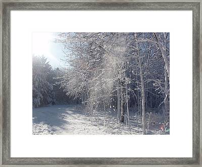 Framed Print featuring the photograph Falling Snow by Teresa Schomig