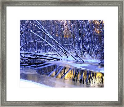 Framed Print featuring the photograph Falling by Terri Gostola