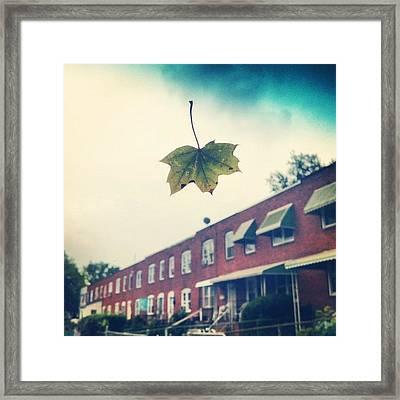 Falling Framed Print by Toni Martsoukos