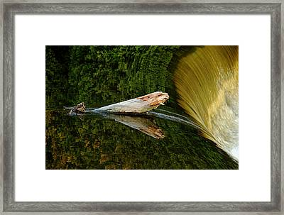 Framed Print featuring the photograph Falling Tree Reflections by Debbie Oppermann