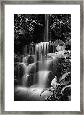 Falling Waters Framed Print by Diana Boyd