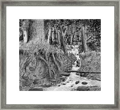 Falls 7/5 2014 Framed Print by Jim Hubbard