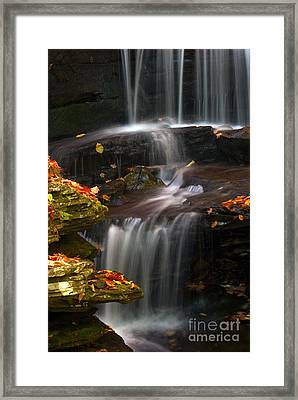Falls And Fall Leaves Framed Print