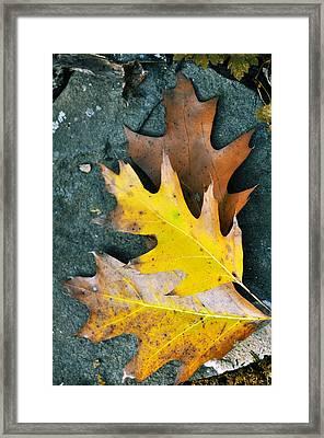 Falls Carpet Framed Print by JAMART Photography