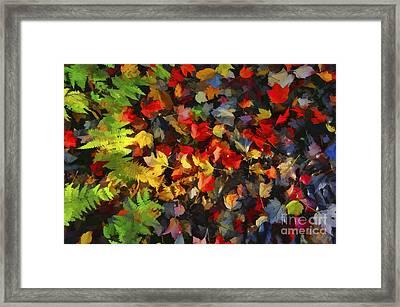 Falls Color Palette Framed Print by Dan Friend