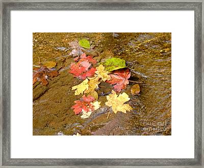 Falls Colors 6349 Framed Print