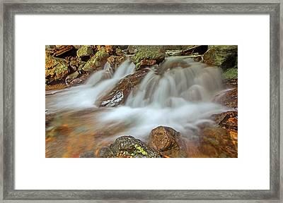 Falls Creek Mount Rainier National Park Framed Print by Bob Noble Photography