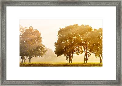 Falls Delight Framed Print