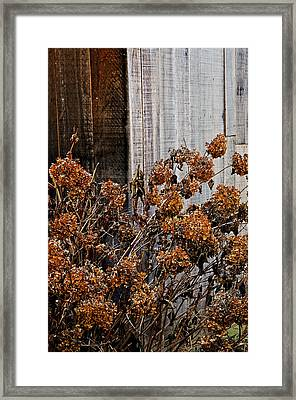 Fall's Fleeting Memories Framed Print by Cathy Shiflett
