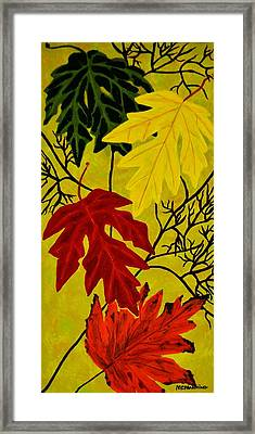Fall's Gift Of Color Framed Print by Celeste Manning