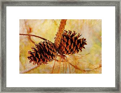 Framed Print featuring the photograph Fall's Golden Light by Trina  Ansel