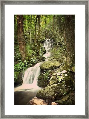 Falls In The Smokies Framed Print by Marty Koch