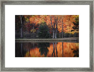 Fall's Natural Fire Framed Print by Lynn Bauer