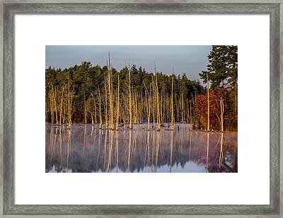 Fall's Start Framed Print