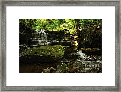 Framed Print featuring the photograph Fallsbrook Falls by Debra Fedchin