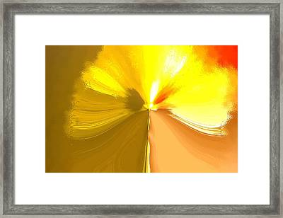 False Dandelion Framed Print