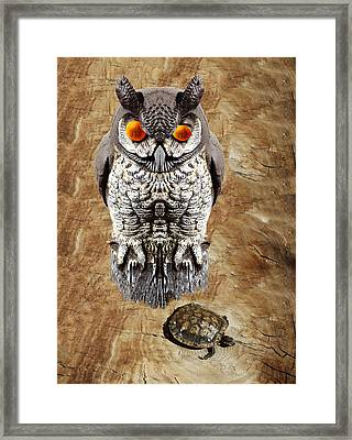 False Owl And Stuffed Turtle Framed Print by Bruce Iorio