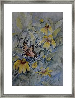 False Sunflower And Butterfly Framed Print