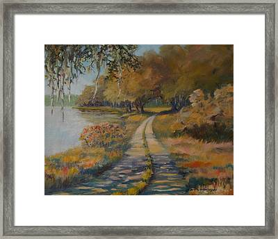 Familiar Road Framed Print