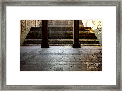 Familiar Steps Framed Print