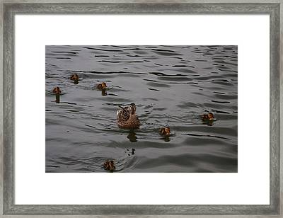 Family Is Everything Framed Print by Vadim Levin
