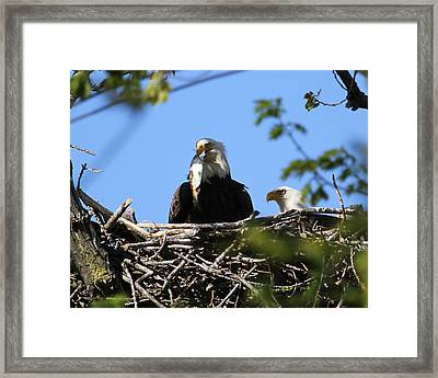 Family Lunch Framed Print