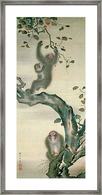 Family Of Monkeys In A Tree Framed Print by Japanese School
