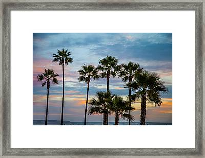 Family Of Palms Framed Print by April Reppucci