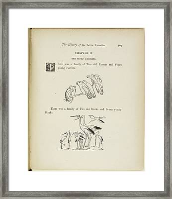 Family Of Parrots And Family Of Storks Framed Print by British Library