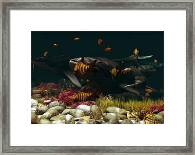 Family Of Whales Framed Print