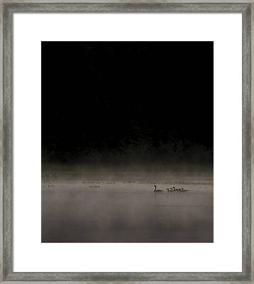 Family On The Lake Framed Print by Aaron Bedell