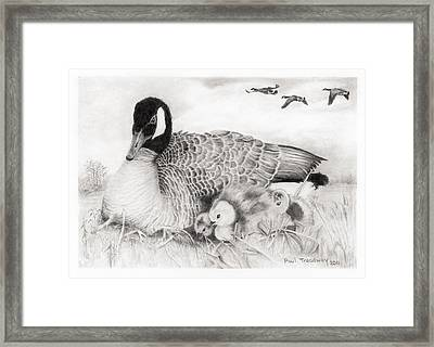 Family Framed Print by Paul Treadway