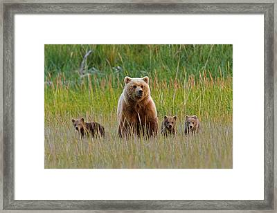 Family Portrait Framed Print
