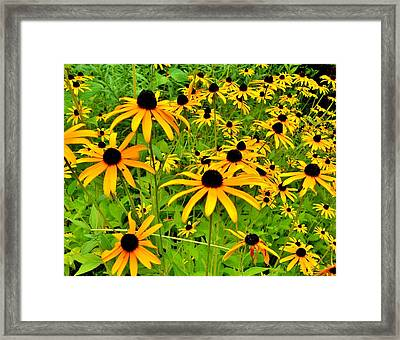Family Reunion  Framed Print