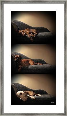Family Framed Print by Thomas Leon