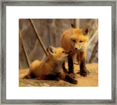 Family Framed Print by Thomas Young