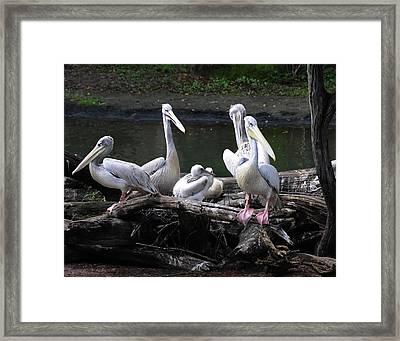 Family Time Framed Print