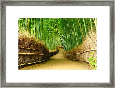 Famous Bamboo Grove At Arashiyama Framed Print by Lanjee Chee