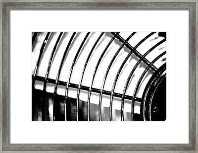 Fan 3 Framed Print by Jason Michael Roust